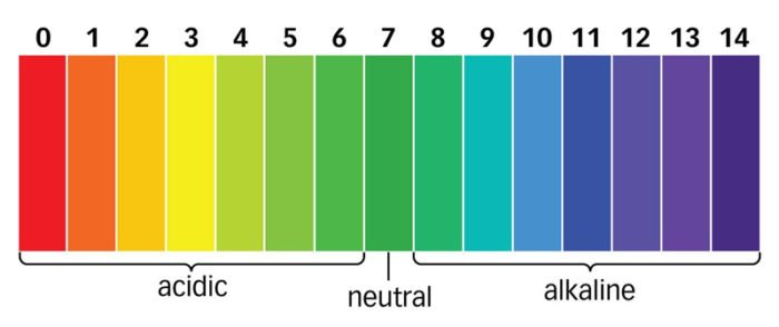 pH scale for fish tanks